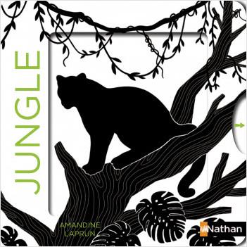 Dans la jungle - Les belles couleurs - Livre d'éveil dès 6 mois