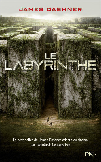 Le labyrinthe - Tome 1