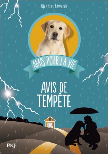 Amis pour la vie - tome 02 : Avis de tempête