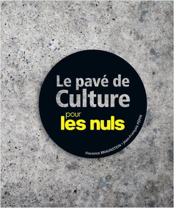 Le Pavé de culture pour les Nuls
