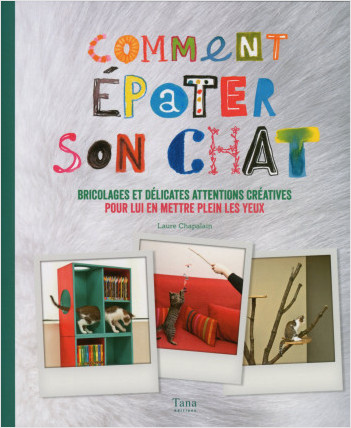 Comment épater son chat